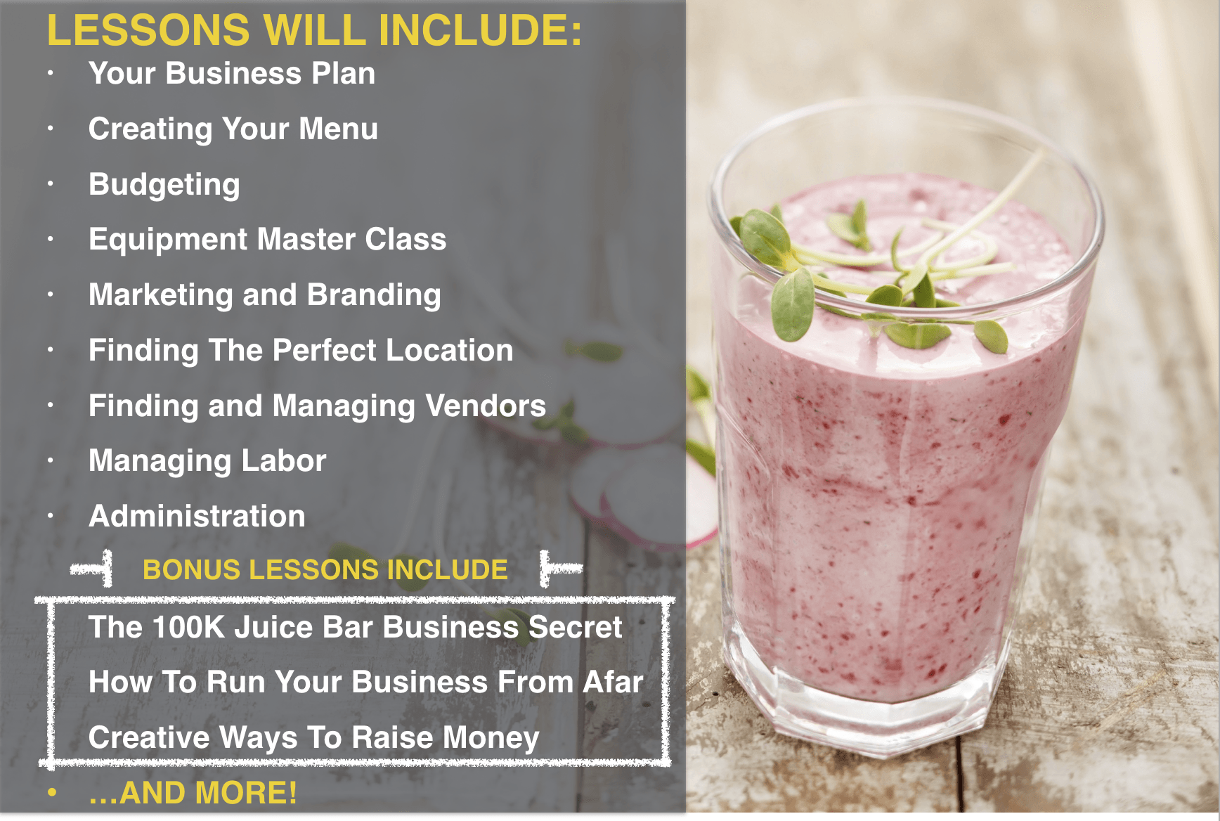 Master blueprint video course 5 proven methods for marketing your juice bar for maximum sales malvernweather Choice Image